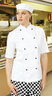 Dennys Hospitality Uniforms-Lightweight Short Sleeve Chefs Jacket-White