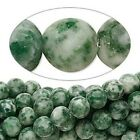 "16"" Strand Natural Tree Agate White Dark Green Gemstone Beads * 4mm,6mm  OR 8mm"