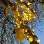 1M-10M INDOOR OUTDOOR CHRISTMAS TREE PARTY CONNECTABLE FAIRY STRING LED LIGHTS