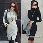 Korean Ladies Turtleneck Long Sleeve Slit Autumn Winter Slim Casual Sheath Dress