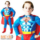 Superman Metallic Muscle Chest Boys Fancy Dress Superhero Kids Costume Outfit