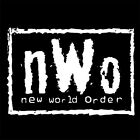 NEW WORLD ORDER (NWO conspiracy illuminati freemasonry age mind control) T-SHIRT