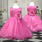USM3D58 Hot Pink Costumes Pageant Baby Clothing Halloween Girls Dress 1 to 13 Y