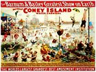 7881.Barnum and bailey.great coney island.people swimming.POSTER.art wall decor