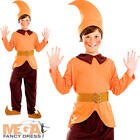 Orange Dwarf Gnome Kids Fancy Dress Book Fairytale Childs Elf Boys Girls Costume