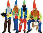 Mens Adult Christmas Panto Pantomime Garden Gnome Dwarf Elf Fancy Dress Costume