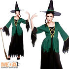 Cauldron Witch Fancy Dress Ladies Halloween Womens Costume Outfit + Witches Hat