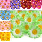 50pcs Silk Gerbera Daisy Bridal Clips Wedding Decor Artificial Fake Flower Heads
