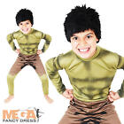 The Incredible Hulk Boys Fancy Dress Superhero Kids Childrens Costume Outfit New