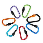 2Pc Aluminum Carabiner D-Ring Clip Hook Climbing Keychain Screw Lock Vogue