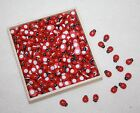 miniature stick on red & black  ladybirds kids  craft choose amount L030