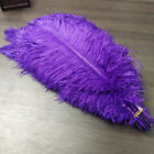 10-100pcs High Quality 6-24 inches Natural Ostrich Feather Wedding Home Decorate