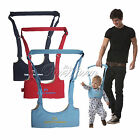 Baby Kids Toddler Walking Assistant Learning Walk Safety Reins Harness 5 Colors