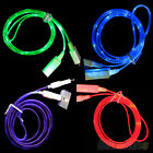 DANDY GLOW LED LIGHT DATA SYNC CHARGER USB CABLE FOR IPHONE 4 4S 5 5C 5S 6 6PLUS