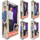 "One Direction Collector Doll Harry Niall Liam Zayn Louis 12"" / 30cm Boxed New 1D"