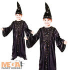 Magical Wizard Boys Fancy Dress Halloween Fairytale Kids Childs Costume Outfit