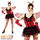 Lovely Ladybug Ladies Fancy Dress Lady Bird Bug Costume Outfit + Wings UK 6-24