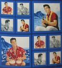 Elvis Presley Aloha Blue Hawaii 1  Pillow Panel Fabric UPICK 1 PP craft quilt