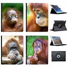 Orangutan Monkey Primates Animal Folio Cover Leather Case For Apple iPad