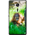 Orangutan Monkey Primates Animal Hard Case For Sony Xperia SP (C5302)