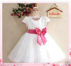 Pink White Christams Wedding Party Flower Girls Dresses SIZE 2 3 4 5 6 7 8 9 10Y