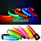 New LED Dog Pet Collar Flashing Luminous Adjustable Safety Light Up Nylon Tag