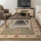 Green Ivory Traditional Persian Bordered Area Rug Oriental All-Over Carpet