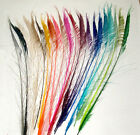 "50 Peacock Sword Feathers 30-38"" L Bleached & Dyed 21 colors available"