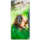 Orangutan Monkey Primates Animal Hard Case For Huawei P8 Lite