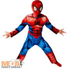 Ultimate Muscle Spiderman Boys Fancy Dress Marvel Comic Superhero Kids Costume