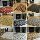 Trellis Style Plain Cheap Small Large Rugs Modern Non Shed Quality Mats Online