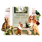 The Vet Visit    Dog Cat and Pets Tshirt  Sizes/Colors