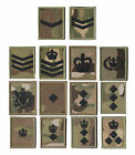 New Black on Multicam / MTP Velcro Rank Badges - All Ranks - British Military