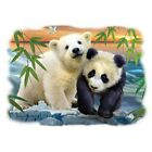 Two Bears Panda & Polar  Hooded Sweatshirt   Sizes/Colors  small print