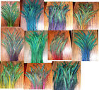 """50 Peacock Sword Feathers 30-35"""" L STEM DYED 11 colors available"""