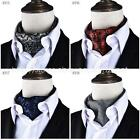 Mens new FASHION Wedding Party FANCY groom best man Necktie tie ascot cravat