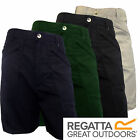 Regatta Mens Water Repellent Multi Pocket Action Shorts New