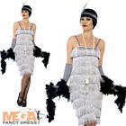 Silver Flapper Ladies Fancy Dress 20s Charleston Jazz Dance Womens Adult Costume