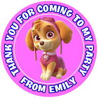 PAW PATROL SKYE  PERSONALISED GLOSS, BIRTHDAY PARTY BAG, SWEET CONE STICKERS