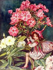 Phlox Flower Fairy ~ Cicely Mary Barker, Flowers ~ Cross Stitch Pattern