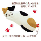Vancool Japan Mitis Cats Hot & Ice Eye Pillow Pad (re-usable) with Scent