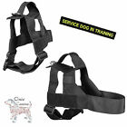 Onie Canine Search Harness - UK Made with Lifetime Guarantee - 38mm Strap Width