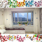 Room Decorations 3D Butterfly Design Home DIY  Décor Decal Art Wall Stickers
