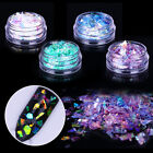 2 Boxes Nail Glitter Sequins Flakies Fluorescent Glass Paper Paillette Nail Art