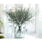 Artificial Small Tree Dried Branch Plant Branches Eucalyptus Grass Home Decor