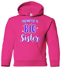 Promoted To Big Sister Youth Hoodie Sweatshirt Expecting Baby Gift Reveal