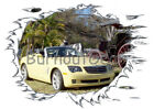 2007 Yellow Chrysler Crossfire Custom Hot Rod Cow T-Shirt 07 Muscle Car Tees $21.99 USD on eBay