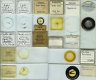 10 Hydrozoa Microscope Slides by British Makers