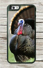 BIRD AMERICAN WILD TURKEY CASE FOR iPHONE 8 or 8 PLUS -dgv6X