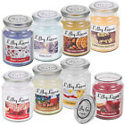 Lilly Lane 18oz Large Scented Candle Glass Jar Fragrance Aromatic Home Gift Xmas